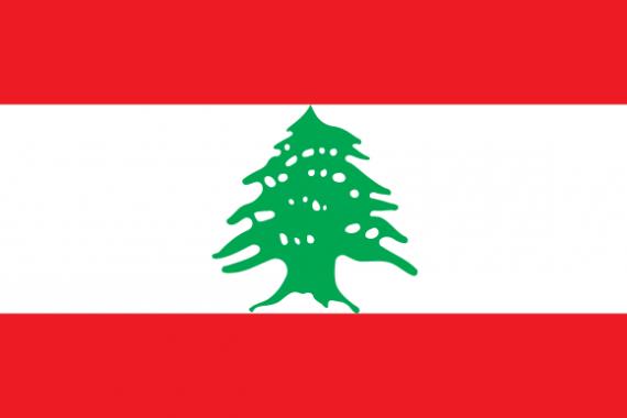 Bandiera del libano con due bande rosse una sopra ed una sotto con al centro una banda bianca con un albero verde